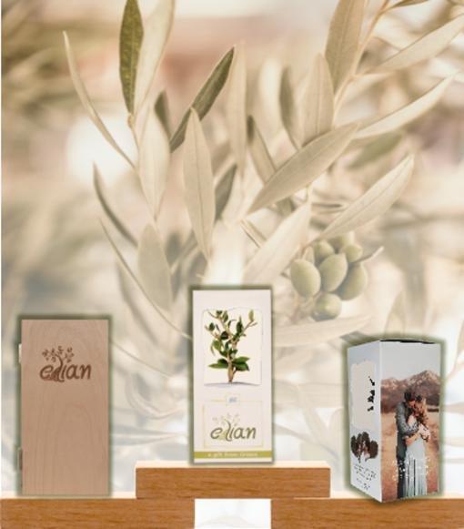 Elian gifts