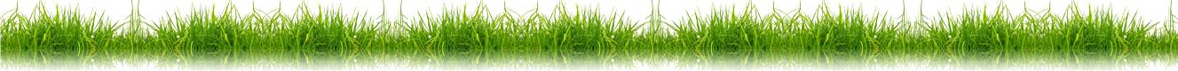 Elian grass effect
