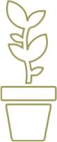 elian grow icon