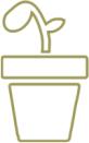 Elian seed icon