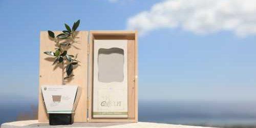 Ξύλινο Κουτί Δώρου Έλιαν 1